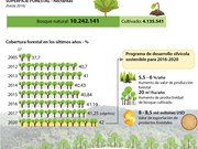 [Infografía] Vietnam busca aumentar cobertura forestal a 42 por ciento