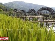 Rueda de agua - característica de la aldea montañosa