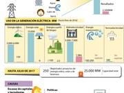[Infografía] Grandes potencialidades de Vietnam en desarrollo de energías renovables