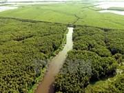 Aldea flotante de Tan Lap, escapada ideal en el delta del río Mekong