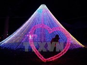 [Fotos] Festival de luces LED en Ciudad Ho Chi Minh