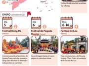 [Infografia] Grandes festivales tradicionales vietnamitas en enero según el calendario lunar