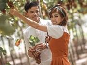 [Fotos] Aldea de cultivo de uva atrae a turistas