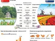 Relaciones Vietnam-Países Bajos: Ejemplo de nexos dinámicos y efectivos