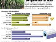Numerosas dificultades enfrentan la producción y el negocio de caña de azúcar