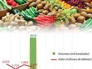 [Info] Exportación de productos agrícolas de Vietnam aumentó 9,7% en primera mitad de 2018