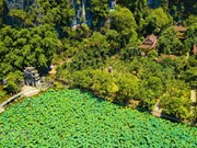 [Foto] Paisaje pintoresco de zona Tam Coc-Bich Dong en provincia norvietnamita de Ninh Binh