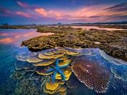 [Foto] Impresionantes fotos en el concurso nacional del turismo