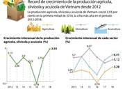 [Infografía] Record de crecimiento de la producción agrícola, silvícola y acuícola de Vietnam