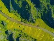 [Foto] Los campos del arroz vistos desde el pico Hang Mua