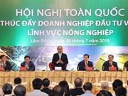 [Foto] Premier vietnamita preside conferencia de promoción de inversiones en agricultura