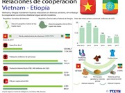 [Infografía] Relaciones de cooperación entre Vietnam y Etiopía