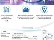 (Info) Relaciones entre Vietnam y FEM