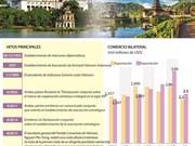 [Infografía] Asociación estratégica Vietnam - Indonesia