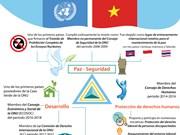 (Info) Vietnam, miembro activo y responsable de la ONU
