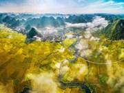 [Foto] Belleza de Vietnam a través de fotos artísticas