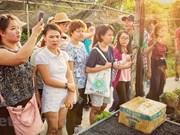 [Foto] Atractivo jardines de viveros en la ciudad vietnamita de Can Tho