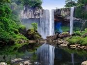 Exploran reserva de la biosfera Kon Ha Nung en Vietnam