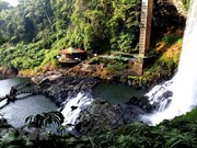 "La majestuosidad de ""cascada de siete capas"" en Vietnam"