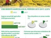 (Info) Crecimiento agrícola de Vietnam alcanzó  2,55 por ciento en el período 2013-2017