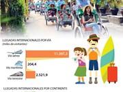 [Info] Llegadas internacionales a Vietnam en los 11 primeros meses del año crecen 21,3 por ciento