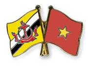 Felicita Vietnam a Brunéi por su Día Nacional