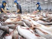 Pronostican dificultades para exportaciones acuáticas de Vietnam