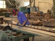 (Televisión) Entrará en vigor el acuerdo entre Vietnam y UE sobre comercio de productos madederos