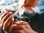 Vietnam decidido a reducir el tabaquismo entre los jóvenes