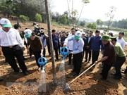 Plantación de árboles, bella tradición del pueblo vietnamita