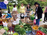 (Televisión) Recrean ambiente del Tet tradicional de Vietnam
