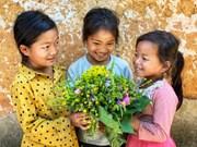 Aldea antigua de Choan The: Comunidad turística con sonrisas brillantes de los niños del grupo étnico Ha Nhi