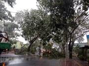 [Foto] Regiones sureña y centrosureña de Vietnam desvastadas tras paso del tifón Usagi