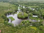 Parque nacional U Minh Thuong de Vietnam: destino fascinante para turistas
