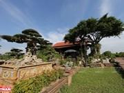 Vitalidad de la aldea de árboles ornamentales Hong Van, en Hanoi