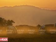 [Fotos] Región del Noroeste de Vietnam a través de la cámara de Nguyen Huu Thong