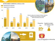 [Info] Relaciones de colaboración económica Vietnam-Brunei
