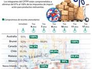 [Info] Hoja de ruta para recortar los impuestos de importación en CPTPP para Vietnam