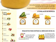 [Info] Vietnam exporta primer lote de mango a Estados Unidos