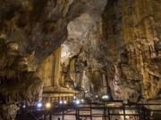 [Fotos] Recibe cueva vietnamita récord continental por sus magníficas estalactitas