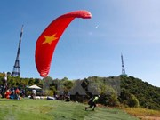 [Fotos] Concurso de parapentes en Da Nang