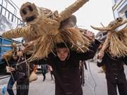 [Foto] Fiesta de búfalos y vacas de la paja en Vinh Phuc
