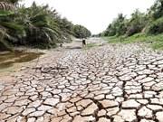 [Foto] Delta del Mekong enfrenta severa sequía