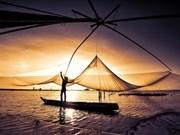 Temporada flotante en provincia vietnamita de An Giang