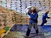 Fuerte reducción de las exportaciones del arroz de Vietnam