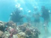 Impulsan protección y restauración de ecosistemas marinos en Vietnam