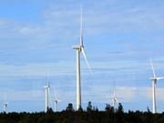Buscan desarrollar la energía eólica en Vietnam