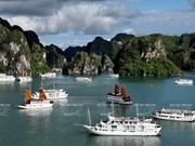 Creciente llegada de cruceros a Vietnam
