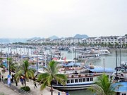 Quang Ninh recibe a más de ocho millones de turistas