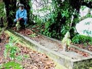 Esqueleto humano gigante encontrado en Malasia